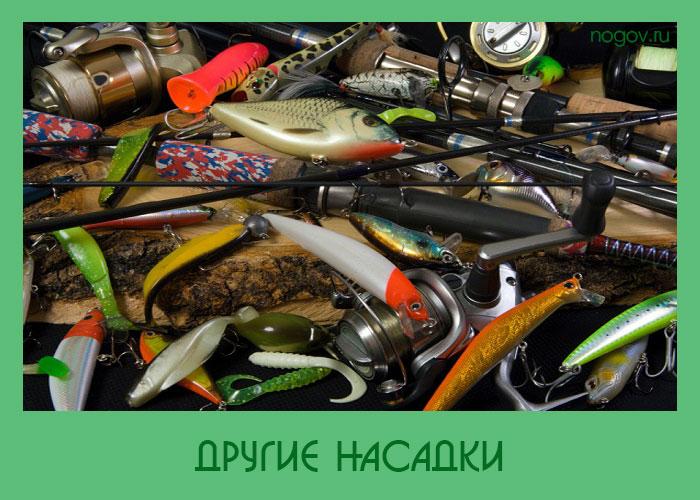 приманка при ловле хищной рыбы