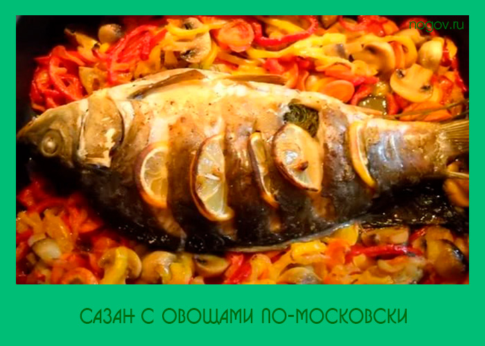 Сазан запеченный с овощами в духовке