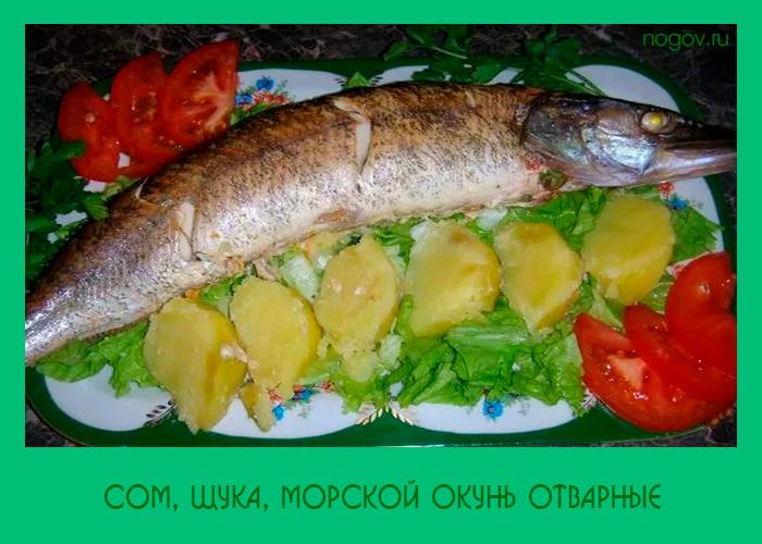 Вареный морской окунь рецепт 5