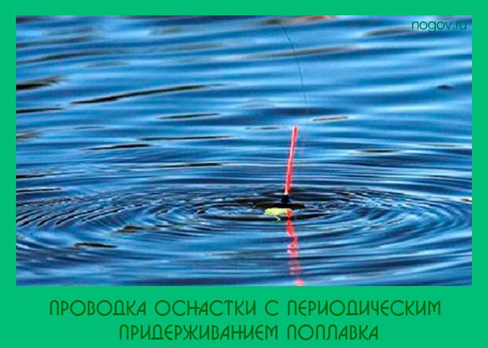 ловля рыбы в проводку на поплавочную