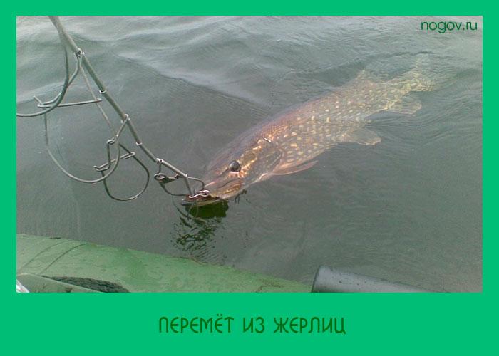 Рыбалка продольник как сделать