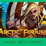 Автомат «Arctic Fortune»