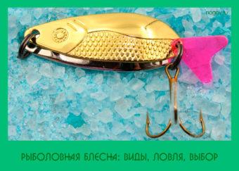 Рыболовная блесна