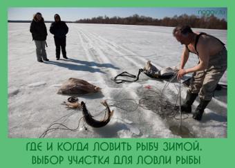 рыбалка в зимний период