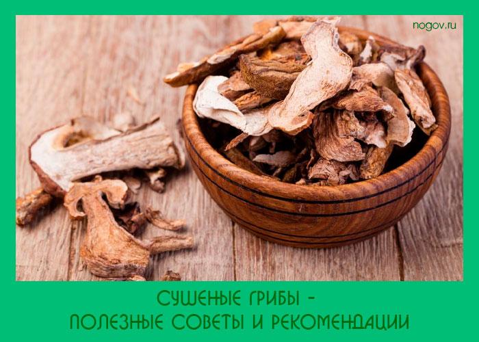 Сушеные грибы - полезные советы и рекомендации